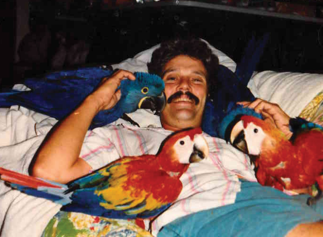Doug Wenger with four baby Macaws